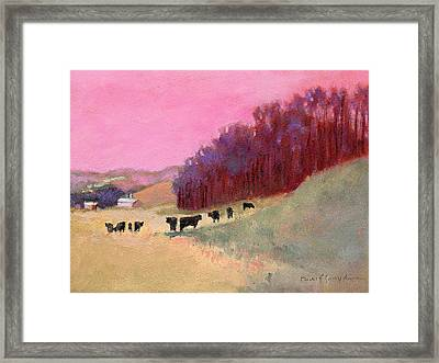 Cows 3 Framed Print