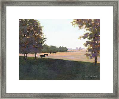 Cows 5 Framed Print