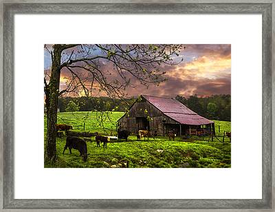 Cows At The Barn Framed Print by Debra and Dave Vanderlaan
