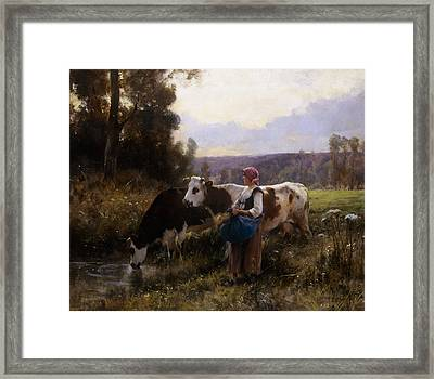 Cows At The Watering Hole Framed Print