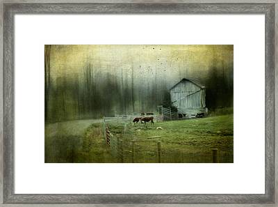 Cows By The Road Framed Print by Kathy Jennings