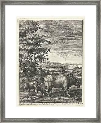 Cows In A Landscape, Hendrick Hondius Framed Print by Hendrick Hondius (i)