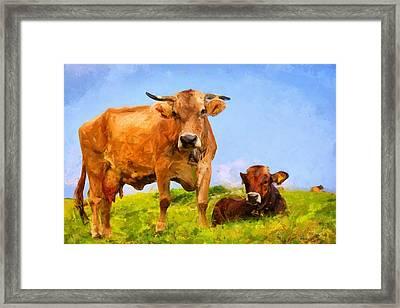 Cows Framed Print by Kai Saarto