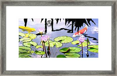 Coy Koi Framed Print by Doug Kreuger