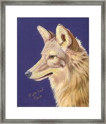 Coyote 2 Framed Print by Ruth Seal