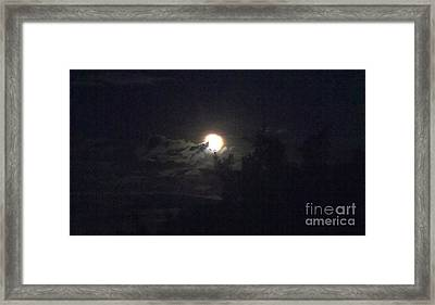 Coyote Moon Framed Print by Polly Anna