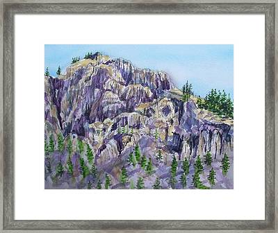 Coyote Mountain Framed Print by Lynne Haines