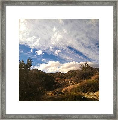 Coyote Wash Dressed Up Framed Print