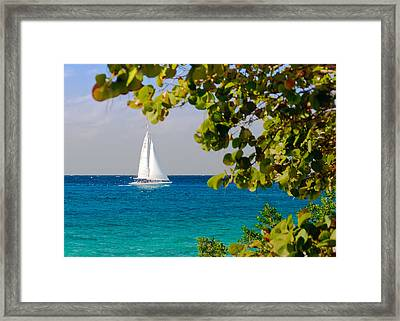 Framed Print featuring the photograph Cozumel Sailboat by Mitchell R Grosky