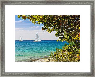 Framed Print featuring the photograph Cozumel Sailboats by Mitchell R Grosky