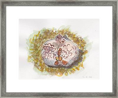Cozy Chickens Framed Print