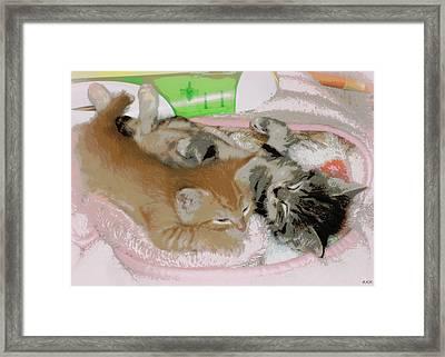Cozy Kittens Framed Print by Heidi Manly
