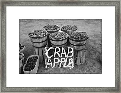 Crab Apples Framed Print by Bill Cannon