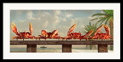 Beer And Crabs Framed Prints