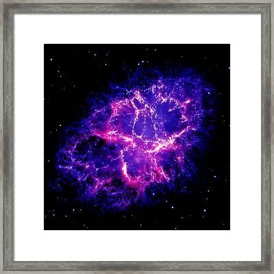 Crab Nebula 1 Framed Print by Renee Anderson