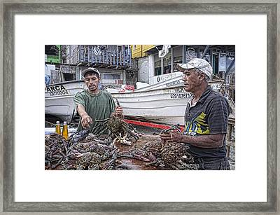 Crabbers At Popotla Framed Print