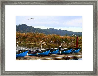 Crabcakes Anyone Framed Print