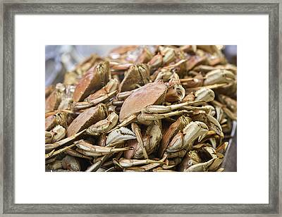 Crabs Framed Print
