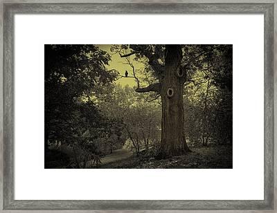 Crack Of Dawn Framed Print by Robin-Lee Vieira