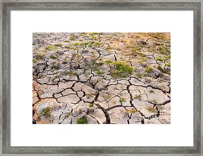 Cracked Earth Framed Print