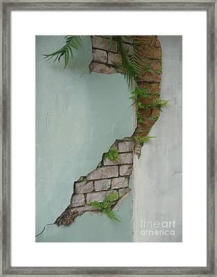 Framed Print featuring the photograph Cracked by Valerie Reeves