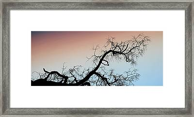 Cracking The Twilight Zone Framed Print by Gabriela Casineanu