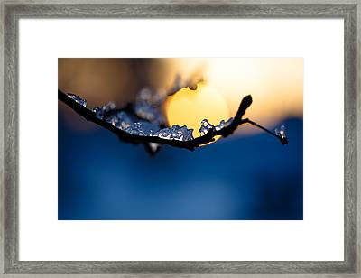 Cradle The Sun In Ice Framed Print