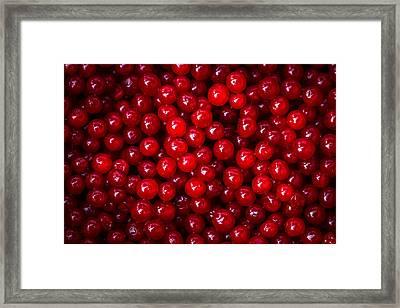 Cranberries - 1 Framed Print