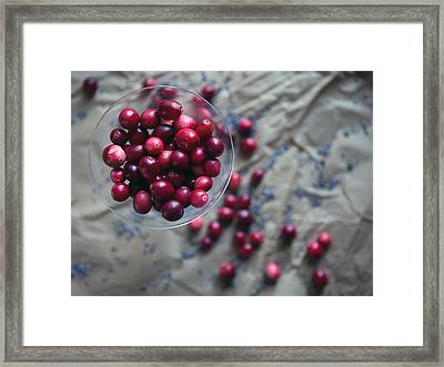 Cranberries And Lavender Buds Framed Print
