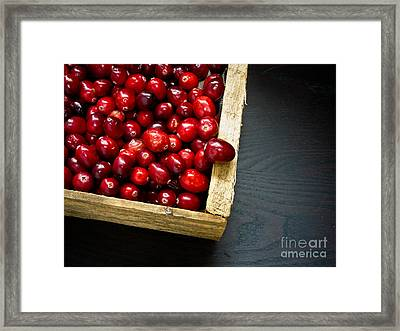 Cranberries Framed Print by Edward Fielding