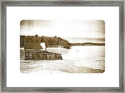 Cranberry Bog In Winter Framed Print