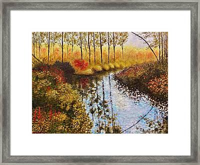 Cranberry Bog Framed Print