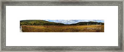 Cranberry Glades Autumn Panoramic Framed Print by Thomas R Fletcher