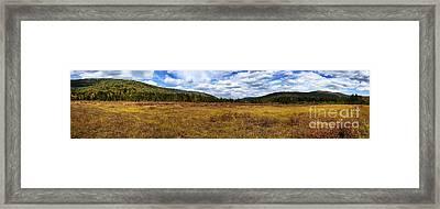 Cranberry Glades Botanical Area Panoramic Framed Print by Thomas R Fletcher