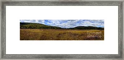Cranberry Glades Panoramic Framed Print by Thomas R Fletcher