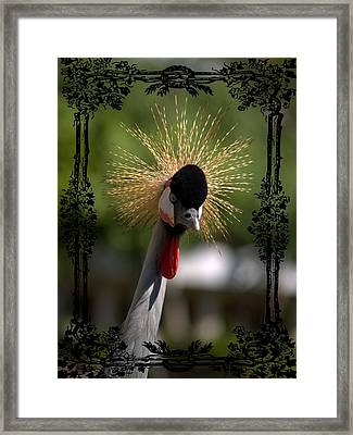 Framed Print featuring the photograph Crane by Athala Carole Bruckner