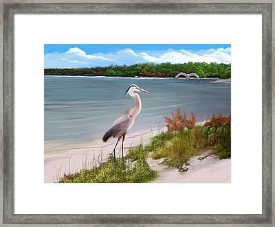 Crane By The Sea Shore Framed Print