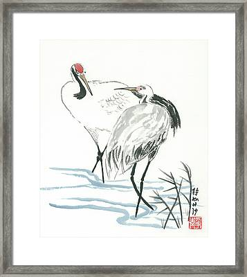 Crane Couple Framed Print