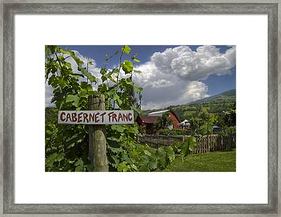 Crane Creek Vineyard Framed Print by Debra and Dave Vanderlaan