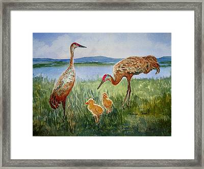 Crane Family Framed Print