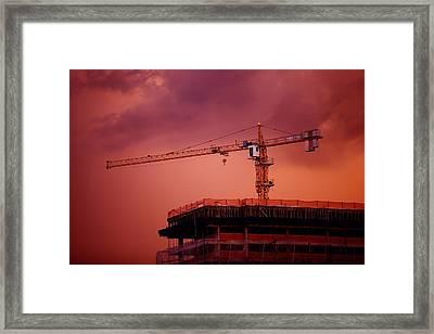 Crane IIi Framed Print by Felipe Djanikian