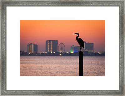 Framed Print featuring the photograph Crane On A Pier by Tim Stanley