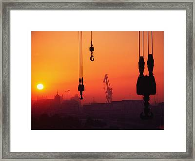Cranes At Sunset Framed Print by The Irish Image Collection