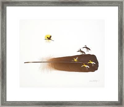 Cranes Flying Framed Print by Chris Maynard