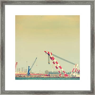 Cranes Framed Print by Gabriela Insuratelu