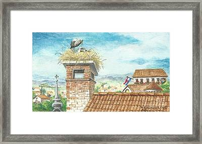 Cranes In Croatia Framed Print by Christina Verdgeline
