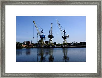 Cranes On The River Bank Framed Print by Aidan Moran