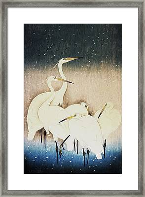 Cranes  Framed Print by Shanina Conway