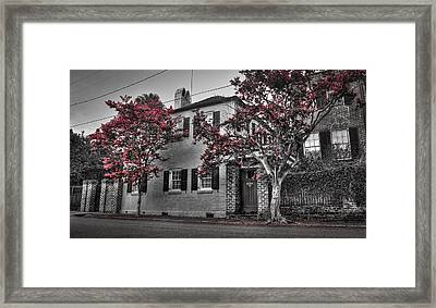 Crape Myrtles In Historic Downtown Charleston 1 Framed Print