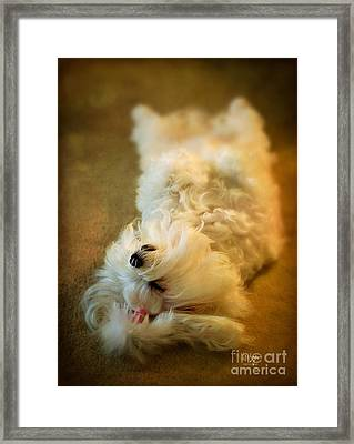 Crash Landing Upside Down Framed Print by Lois Bryan